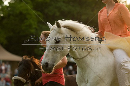 (c)SimoneHomberg_Ponyfest_Schauprogramm_20150606_0494