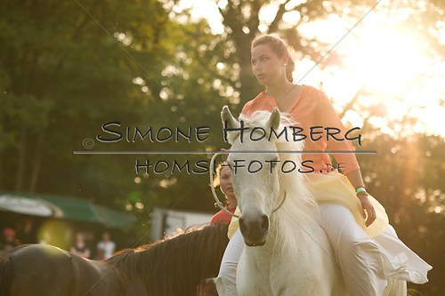 (c)SimoneHomberg_Ponyfest_Schauprogramm_20150606_0501