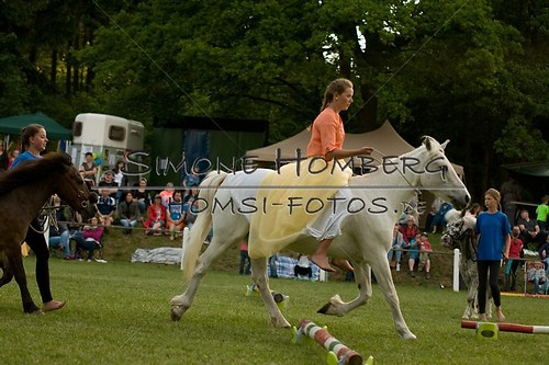(c)SimoneHomberg_Ponyfest_Schauprogramm_20150606_0503