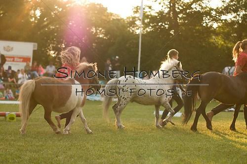 (c)SimoneHomberg_Ponyfest_Schauprogramm_20150606_0505