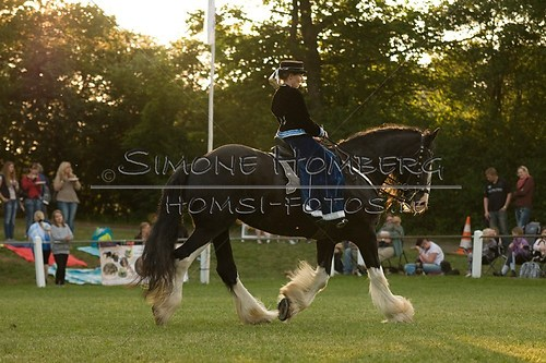 (c)SimoneHomberg_Ponyfest_Schauprogramm_20150606_0513