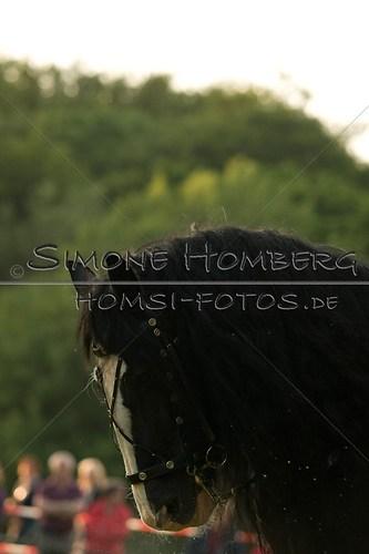 (c)SimoneHomberg_Ponyfest_Schauprogramm_20150606_0514