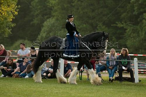 (c)SimoneHomberg_Ponyfest_Schauprogramm_20150606_0520