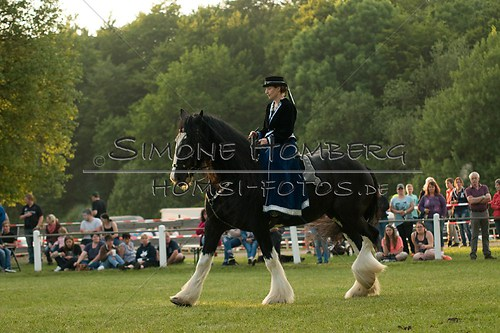 (c)SimoneHomberg_Ponyfest_Schauprogramm_20150606_0521