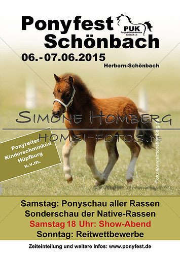 Ponyfest-Schönbach-2015