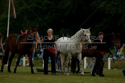 (c)SimoneHomberg_Ponyfest_Schauprogramm_20150606_0781