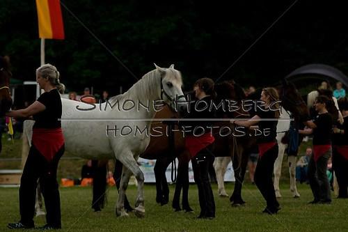 (c)SimoneHomberg_Ponyfest_Schauprogramm_20150606_0785