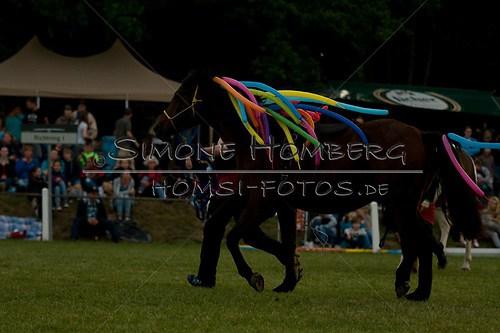 (c)SimoneHomberg_Ponyfest_Schauprogramm_20150606_0790