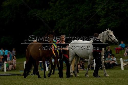 (c)SimoneHomberg_Ponyfest_Schauprogramm_20150606_0791