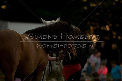 (c)SimoneHomberg_Ponyfest_Schauprogramm_20150606_0794
