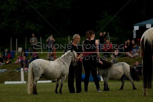 (c)SimoneHomberg_Ponyfest_Schauprogramm_20150606_0795