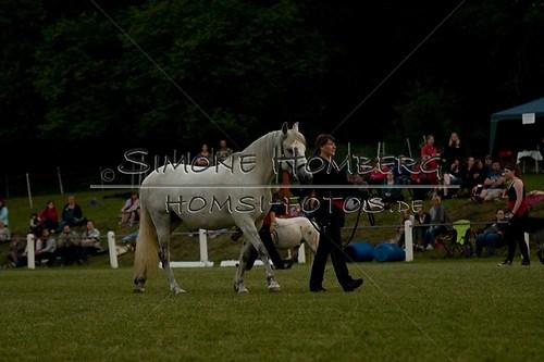 (c)SimoneHomberg_Ponyfest_Schauprogramm_20150606_0800