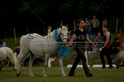 (c)SimoneHomberg_Ponyfest_Schauprogramm_20150606_0801