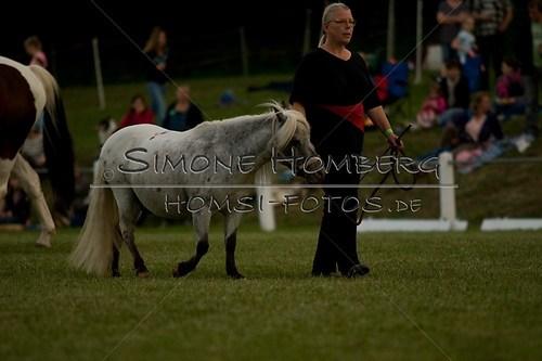(c)SimoneHomberg_Ponyfest_Schauprogramm_20150606_0803