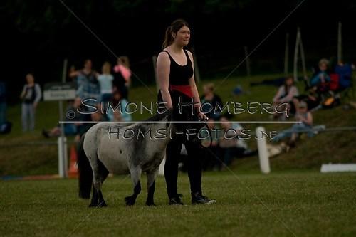 (c)SimoneHomberg_Ponyfest_Schauprogramm_20150606_0804
