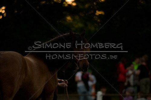 (c)SimoneHomberg_Ponyfest_Schauprogramm_20150606_0805