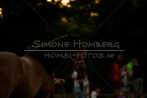 (c)SimoneHomberg_Ponyfest_Schauprogramm_20150606_0806