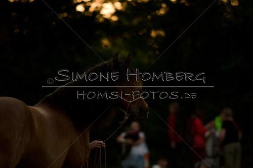(c)SimoneHomberg_Ponyfest_Schauprogramm_20150606_0807
