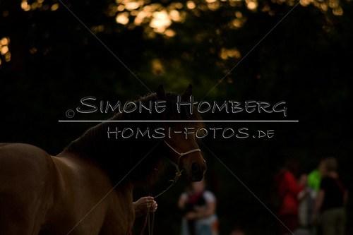 (c)SimoneHomberg_Ponyfest_Schauprogramm_20150606_0808
