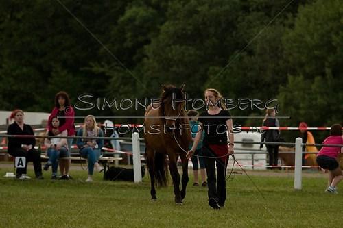 (c)SimoneHomberg_Ponyfest_Schauprogramm_20150606_0810