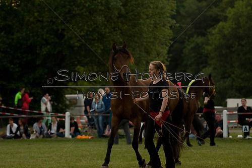 (c)SimoneHomberg_Ponyfest_Schauprogramm_20150606_0811