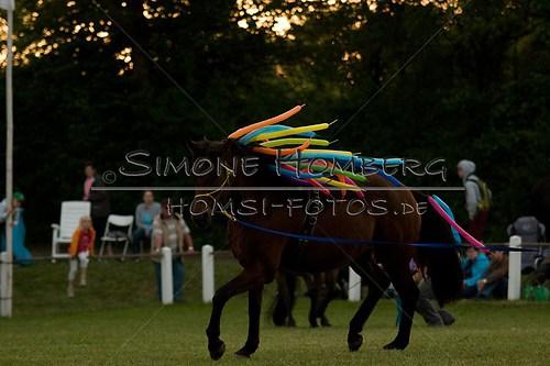 (c)SimoneHomberg_Ponyfest_Schauprogramm_20150606_0814