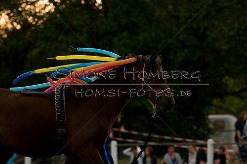 (c)SimoneHomberg_Ponyfest_Schauprogramm_20150606_0815