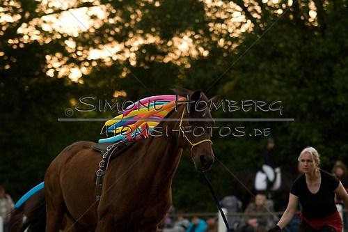 (c)SimoneHomberg_Ponyfest_Schauprogramm_20150606_0816