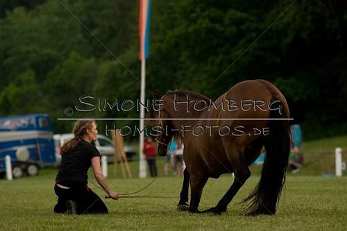 (c)SimoneHomberg_Ponyfest_Schauprogramm_20150606_0818