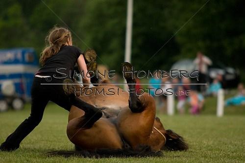 (c)SimoneHomberg_Ponyfest_Schauprogramm_20150606_0824