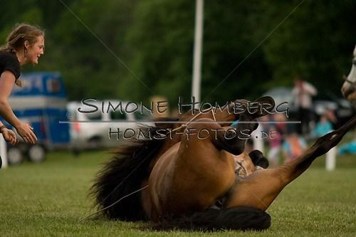 (c)SimoneHomberg_Ponyfest_Schauprogramm_20150606_0828