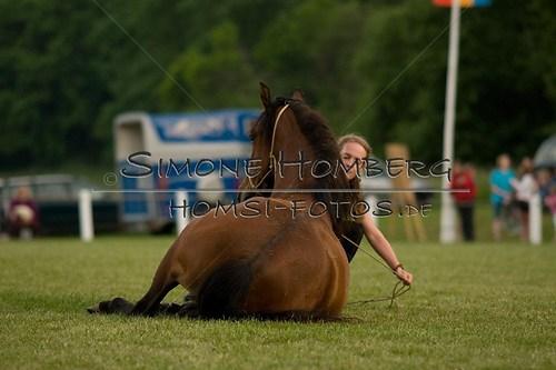 (c)SimoneHomberg_Ponyfest_Schauprogramm_20150606_0832