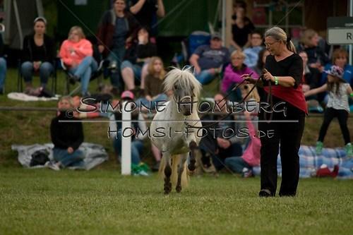 (c)SimoneHomberg_Ponyfest_Schauprogramm_20150606_0834
