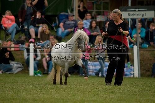 (c)SimoneHomberg_Ponyfest_Schauprogramm_20150606_0835