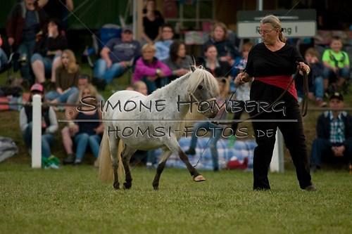 (c)SimoneHomberg_Ponyfest_Schauprogramm_20150606_0836