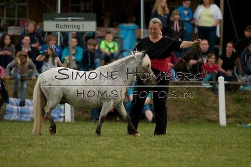 (c)SimoneHomberg_Ponyfest_Schauprogramm_20150606_0837