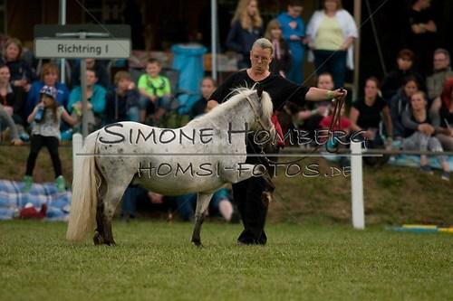 (c)SimoneHomberg_Ponyfest_Schauprogramm_20150606_0838
