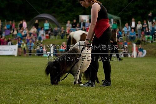 (c)SimoneHomberg_Ponyfest_Schauprogramm_20150606_0839