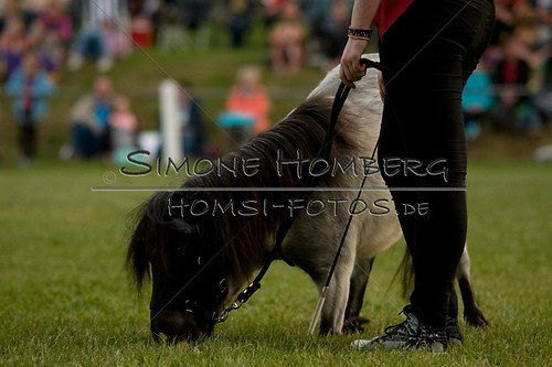 (c)SimoneHomberg_Ponyfest_Schauprogramm_20150606_0840