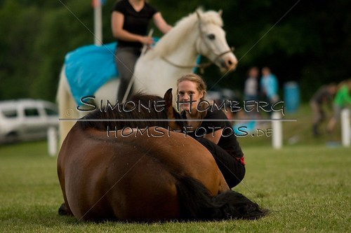 (c)SimoneHomberg_Ponyfest_Schauprogramm_20150606_0841