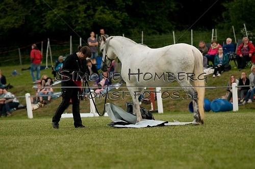 (c)SimoneHomberg_Ponyfest_Schauprogramm_20150606_0844