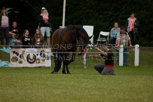 (c)SimoneHomberg_Ponyfest_Schauprogramm_20150606_0845