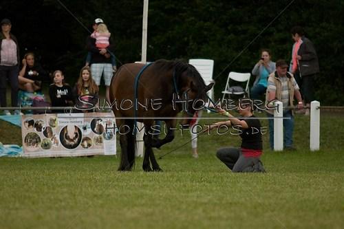(c)SimoneHomberg_Ponyfest_Schauprogramm_20150606_0846