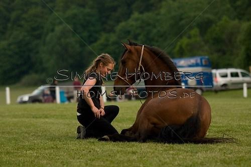 (c)SimoneHomberg_Ponyfest_Schauprogramm_20150606_0851