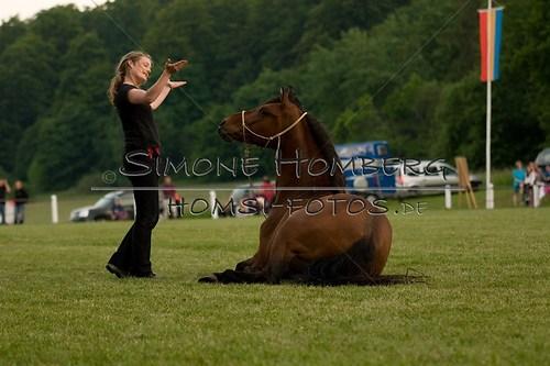 (c)SimoneHomberg_Ponyfest_Schauprogramm_20150606_0855