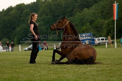 (c)SimoneHomberg_Ponyfest_Schauprogramm_20150606_0856