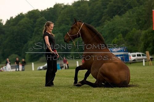 (c)SimoneHomberg_Ponyfest_Schauprogramm_20150606_0857