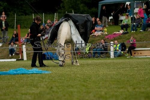 (c)SimoneHomberg_Ponyfest_Schauprogramm_20150606_0859