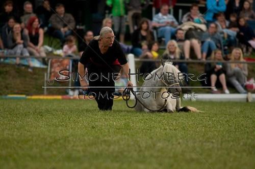 (c)SimoneHomberg_Ponyfest_Schauprogramm_20150606_0866