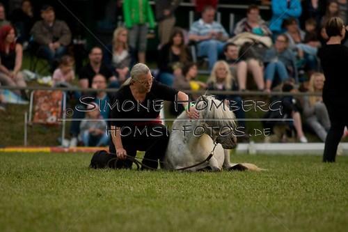 (c)SimoneHomberg_Ponyfest_Schauprogramm_20150606_0867